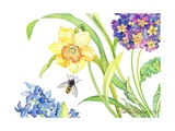 Daffodil and Primrose  2007