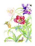 Botanical Print -Card Collection  2007