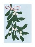 Mistletoe  2014