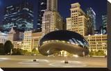 Millennium Park Chicago Cloud