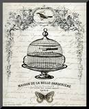 French Birdcage I
