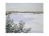 Sunny Landscape in Winter (Sweden)