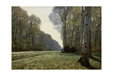 The Road to Chailly (The Forest of Fontainebleau)  C 1865