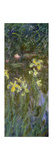 The Yellow Irises  1914-17