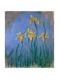 The Yellow Irises  1918-25