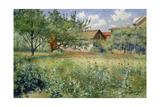 Poppy Field  1923