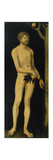Adam  1531