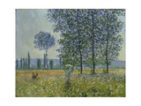 Fields in Spring  1887
