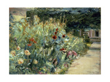 Flower Bed in the Artist's Garden on Lake Wannsee  1923