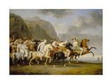 Riding Amazons  1788