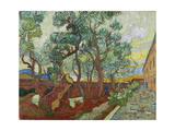 The Garden of St  Paul's Hospital at St  Remy  (Le Parc De L'Hopital  a Saint-Rémy)  1889