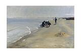 Southern Beach at Skagen  1884