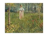 Woman in a Garden (Femme Dans Un Jardin)  1887