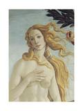 The Birth of Venus (Detail)