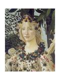 "Detail from the Painting ""Primavera"": Head of Flora Giclée par Sandro Botticelli"