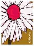 Flower Grow