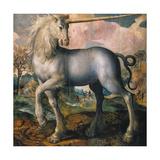 Unicorn  1572