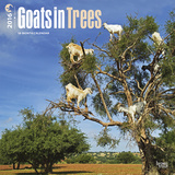Goats in Trees - 2016 Calendar