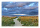 Jetties Beach Path