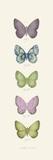 Jardin des Papillons I