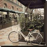 Firenze Bicycle