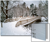 Snow Covered Bridge Central Park