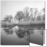 Prospect Park Lake In Morning - Brooklyn Landscape