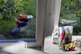 Window Sill Still Life  Barbecue (Garden View)