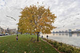 Lake Merritt in Fall