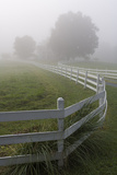 White Fence and Grasses  Chapel Hill  NC (Fog)