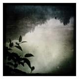 Rivers I