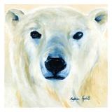 Ours polaire Reproduction d'art par Sylvia Audet