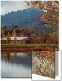 Autumn Landscape Pondside  Calistoga Napa Valley