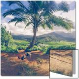 Hanalei Chicken Landscape  Kauai Hawaii