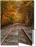 Autumn Tracks  New Hampshire