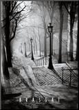 Les Escaliers de Montmartre  Paris