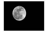 Moon Light 4