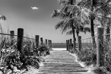 Boardwalk on the Beach - Key West - Florida