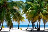 Paradise Beach - Florida - USA Papier Photo par Philippe Hugonnard