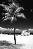South Miami Beach Landscape with Life Guard Station - Florida - USA