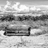 Wooden Bench overlooking a Florida wild Beach