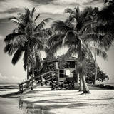 Paradisiacal Beach with a Life Guard Station - Miami - Florida