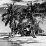 Paradisiacal Beach with a Life Guard Station - Miami - Florida