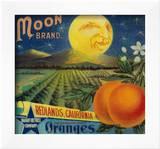 Moon Orange Label - Redlands  CA