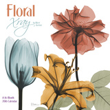 Floral Xray - 2016 Calendar