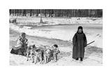 Hundeschlitten in Sankt Petersburg  1910erJahre