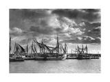 Fishing Port in Sassnitz on the Isle of Ruegen  1938