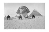 Pyramids and Sphinx of Giza  Ca 1900's