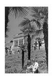 Spa Town Sukhumi in Abkhazia  1941