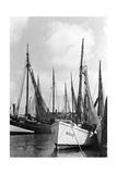 Fischerboote in Königsberg